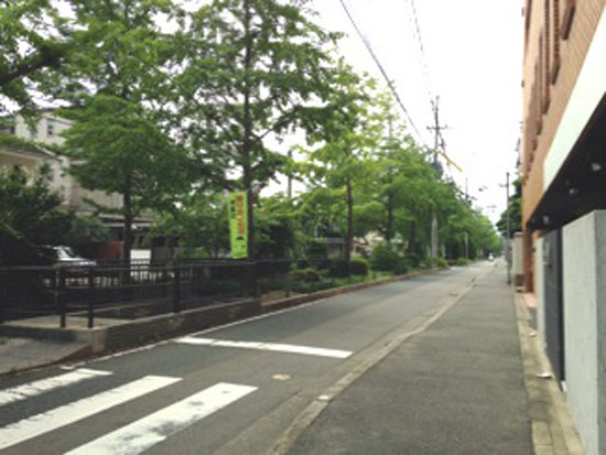 写真 2014-07-13 9 16 18